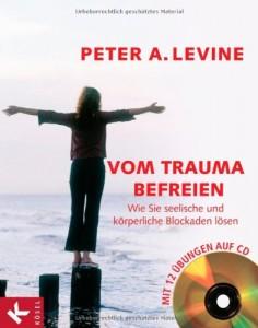 buch-vom-trauma-befreien